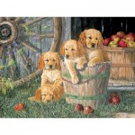 Cobble-Hill-54590 Pièces XXL - Terry Doughty - Puppy Pail