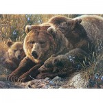 Cobble-Hill-54624 Pièces XXL - Grizzly Family