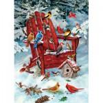 Cobble-Hill-57168 Oiseaux d'Adirondack