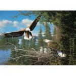 Cobble-Hill-57169 Nesting Eagles