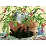 Cobble-Hill-80031 Cactus Kitties
