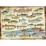Cobble-Hill-80094 Freshwater Fish of North America