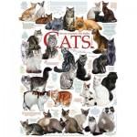 Cobble-Hill-80095 Cat Quotes