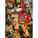 Cobble-Hill-80100 Fall Birds