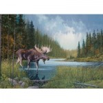 Cobble-Hill-80133 Moose Lake