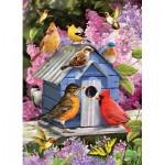 Cobble-Hill-80153 Spring Birdhouse
