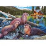 Cobble-Hill-80164 River Otters