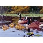Cobble-Hill-80185 Platts Pond