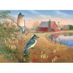 Cobble-Hill-80189 Cedar Waxwings