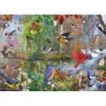 Cobble-Hill-80243 Birds of the Season