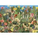 Cobble-Hill-80244 Cactus Garden