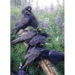 Cobble-Hill-80252 Raven Rendezvous