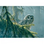 Cobble-Hill-85002 Pièces XXL - Mossy Branches - Spotted Owl