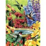 Cobble-Hill-85020 Pièces XXL - Hummingbird Garden