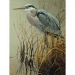 Cobble-Hill-85029 Pièces XXL - Great Blue Heron