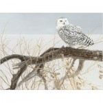 Cobble-Hill-85031 Pièces XXL - Fallen Willow Snowy Owl