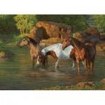 Cobble-Hill-85051 Pièces XXL - Horse Pond