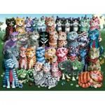 Perre-Anatolian-1030 Cat Family Reunion