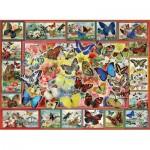 Perre-Anatolian-1094 Lots Of Butterflies