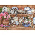 Perre-Anatolian-3158 Les chatons