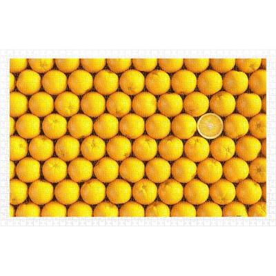 Pintoo-H1992 Puzzle en Plastique - Fruits - Orange