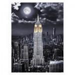 Pintoo-H2120 Puzzle en Plastique - Darren Mundy - Empire State Building