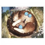Pintoo-H2297 Monokubo - Springtime Nap