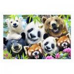 Pintoo-H2315 Howard Robinson - Selfie Bear Essentials