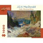 Pomegranate-AA1012 J.E.H. MacDonald - Falls, Montreal River, 1920