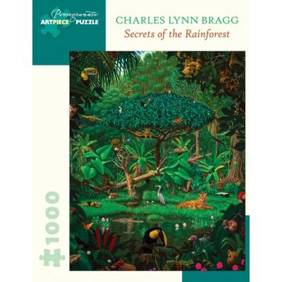 Pomegranate-AA1061 Charles Lynn Bragg - Secrets of the Rainforest, 1991