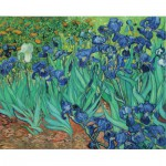 Pomegranate-AA331 Van Gogh Vincent - Iris