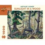 Pomegranate-AA847 Arthur Lismer - Sunlight in a Wood, 1930