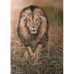 PuzzelMan-238 Nico Bulder : Le Lion