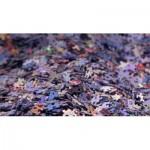PuzzelMan-655 Couple Royal Willem-Alexander et Maxima des Pays-Bas