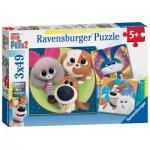 Ravensburger-05014 Pièces XXL - 3 Puzzles - The Secret Life of Pets 2