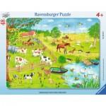 Ravensburger-06145 Puzzle Cadre - Marcher dans la Campagne