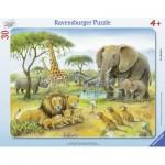 Ravensburger-06146 Puzzle Cadre - Animaux d'Afrique