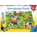 Ravensburger-08002 3 Puzzles - Chats et Chiens