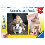 Ravensburger-08028 3 Puzzles - Portraits Drôles d'Animaux