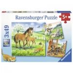 Ravensburger-08029 3 Puzzles - Câlins