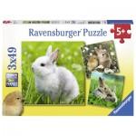Ravensburger-08041 3 Puzzles - Lapin Mignon