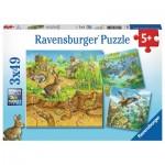 Ravensburger-08050 3 Puzzles - Animaux dans leurs Habitats