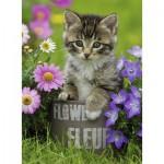 Ravensburger-10847 Chaton dans les Fleurs
