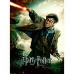 Ravensburger-12869 Pièces XXL - Harry Potter