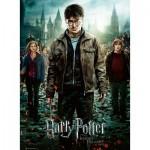 Ravensburger-12871 Pièces XXL - Harry Potter - Les Reliques de la Mort