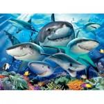 Ravensburger-13225 Pièces XXL - Requins rieurs