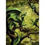 Ravensburger-14789 Dragon de la Forêt par Anne Stokes