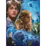 Ravensburger-14821 Harry Potter à Poudlard (TM)