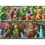 Ravensburger-14824 Des chats sur l'Etagère