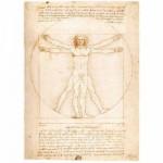 Ravensburger-15250 Léonard de Vinci : L'Homme de Vitruve